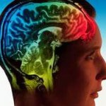 Нейроинженер загрузит свой мозг в компьютер, чтобы жить вечно