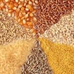 Ученые: цельное зерно защищает от болезней сердца