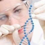 Ген долголетия есть у каждого пятого человека