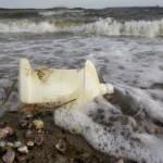 В Мировой океан ежегодно попадает 8 млн тонн пластикового мусора