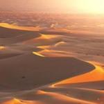 Ученые объяснили, как песок Сахары питает леса Амазонки