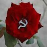 Минобрнауки: все школы проведут урок о 70-летии Победы
