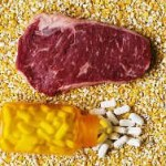 Антибиотики в мясе обретут популярность во всем мире
