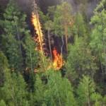 БМД выпал из самолета во время учений, горит 200 га леса