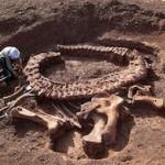 Шотландские палеонтологи изучили останки древнего чудовища