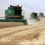 Зерновое оружие России