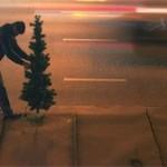 В Татарстане приставы арестовали новогоднюю елку