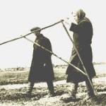 """От """"дачной амнистии"""" к аграрной реформе"""