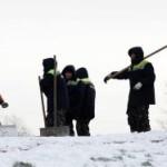 России грозит коллапс без гастарбайтеров