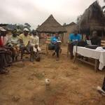 Эпидемия Эболы началась с игр мальчика в дупле