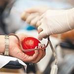 В Алтайском крае решили сэкономить на донорской крови