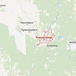 В Кемеровской области нашли тела двух подростков