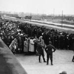 Освенцим не должен быть забыт