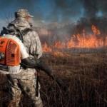 В Приморье огонь не могут потушить уже пятые сутки