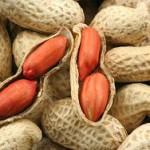 Медики предлагают детям есть арахис от аллергии