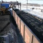 Пьяные жительницы Кузбасса утащили полтонны угля