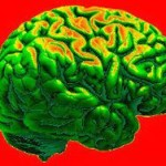 """Ученые выяснили, как мозг человека """"путешествует в прошлое"""""""
