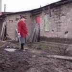 Украинские силовики обстреливают коров и калечат мирных жителей