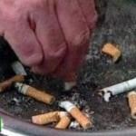 Медики: никотин истончает кору головного мозга