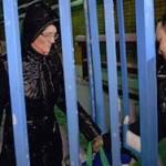 Дело Давыдовой: игры патриотов
