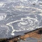 Море у Фукусимы стало радиоактивным