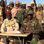 """В Нигерии ликвидированы 207 боевиков """"Боко Харам"""""""