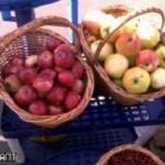 Регулярное потребление яблок поможет продлить жизнь