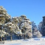 Российские ученые прогнозируют глобальное похолодание
