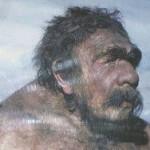 Собаки помогли людям одержать победу над неандертальцем