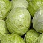 Амурские фермеры прогнозируют рост цен на капусту до 100 рублей