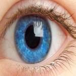 Исследование: структура глаза влияет на зрение