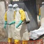 Число жертв вспышки лихорадки Эбола превысило 10 тысяч человек