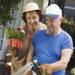 Весне дорогу: как сохранить здоровье дачника