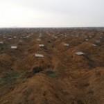 Прокуратура: под Илловайском погибли более 360 военнослужащих