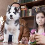 Девочка из Копейска получила в подарок от Путина щенка