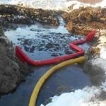 Экологи сообщили об утечке нефти на сахалинском месторождении