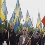 Шведские демократы распоясались: расистский настрой