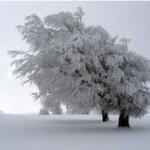 В Минэнерго предупредили о холодной зиме